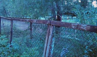 забор садик бабочка