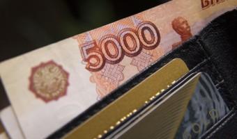 Деятельность МФО: оформление займов и их виды
