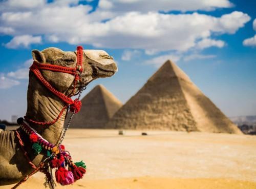 Если вы путешествуете с семьей: 3 места, которые заинтересуют вас в 2019 году